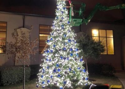 Commercial Christmas Lighting Display